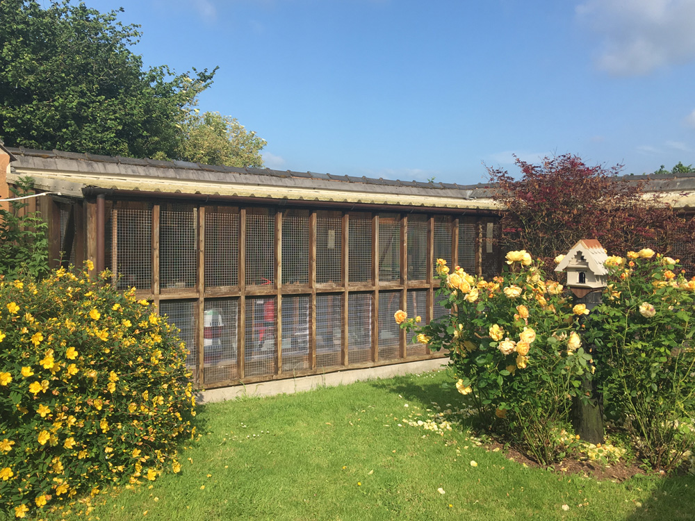 Cattery Chalets Taunton